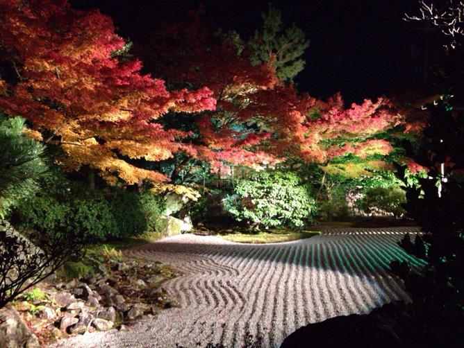 京都 紅葉旅行