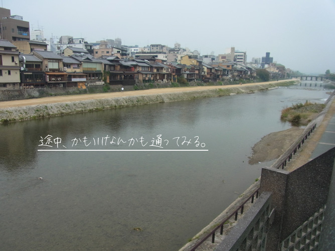京都旅行 祇園四条 鴨川