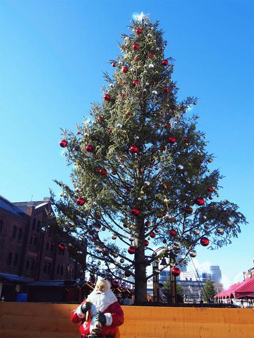 横浜 赤レンガ クリスマスイルミネーション